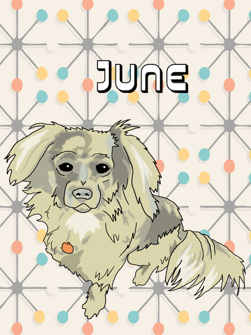 June-Commission-preview