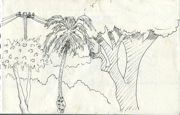 sketch nov 16