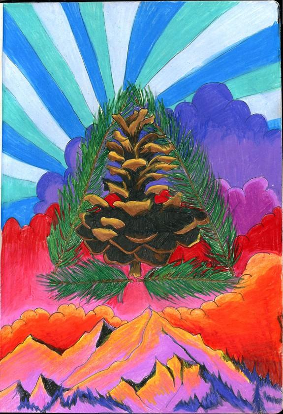 pineconecolor